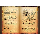 Book of Shadows White Wiccan Magick Grimoire