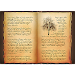 Book of Shadows White Wiccan Magick Grimoire Icon