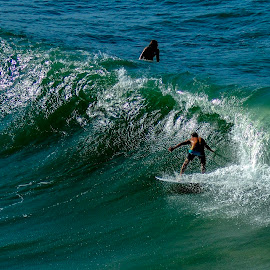 On the crest  by Gary Thompson  - Sports & Fitness Surfing ( noosa national park )