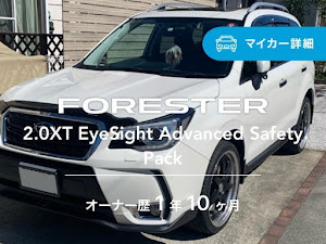 フォレスター SJ5 XTのカスタム事例画像 よっぴさんの2020年03月26日18:31の投稿