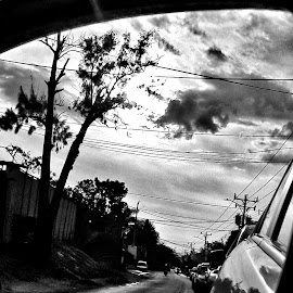 In line by Franco Tarelli - Black & White Objects & Still Life ( #phonephoto, #mirror, #cars, #blackandwhite, #inline )