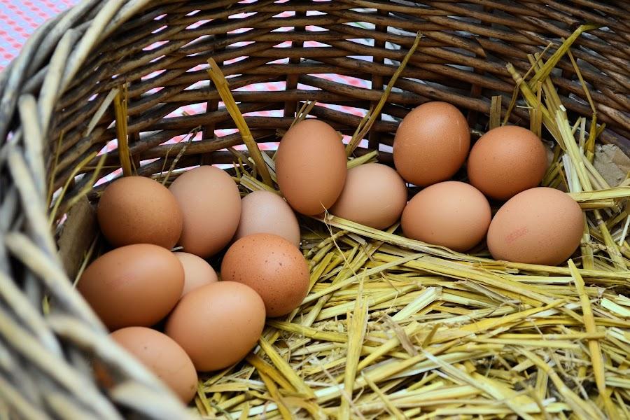 Eggs in one basket by Heather Aplin - Food & Drink Ingredients ( market, fresh, straw, basket, egg,  )
