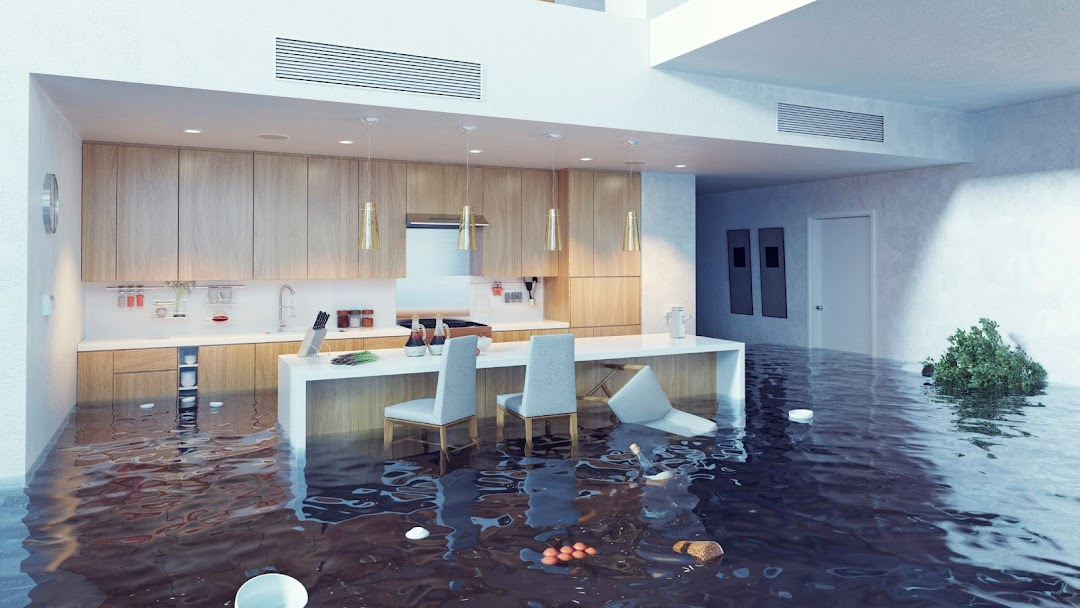 Dan Water Damage Restoration Pro Chicago - Water Damage Restoration Service  in Chicago
