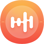 Lite Recorder - High quality Voice Recorder