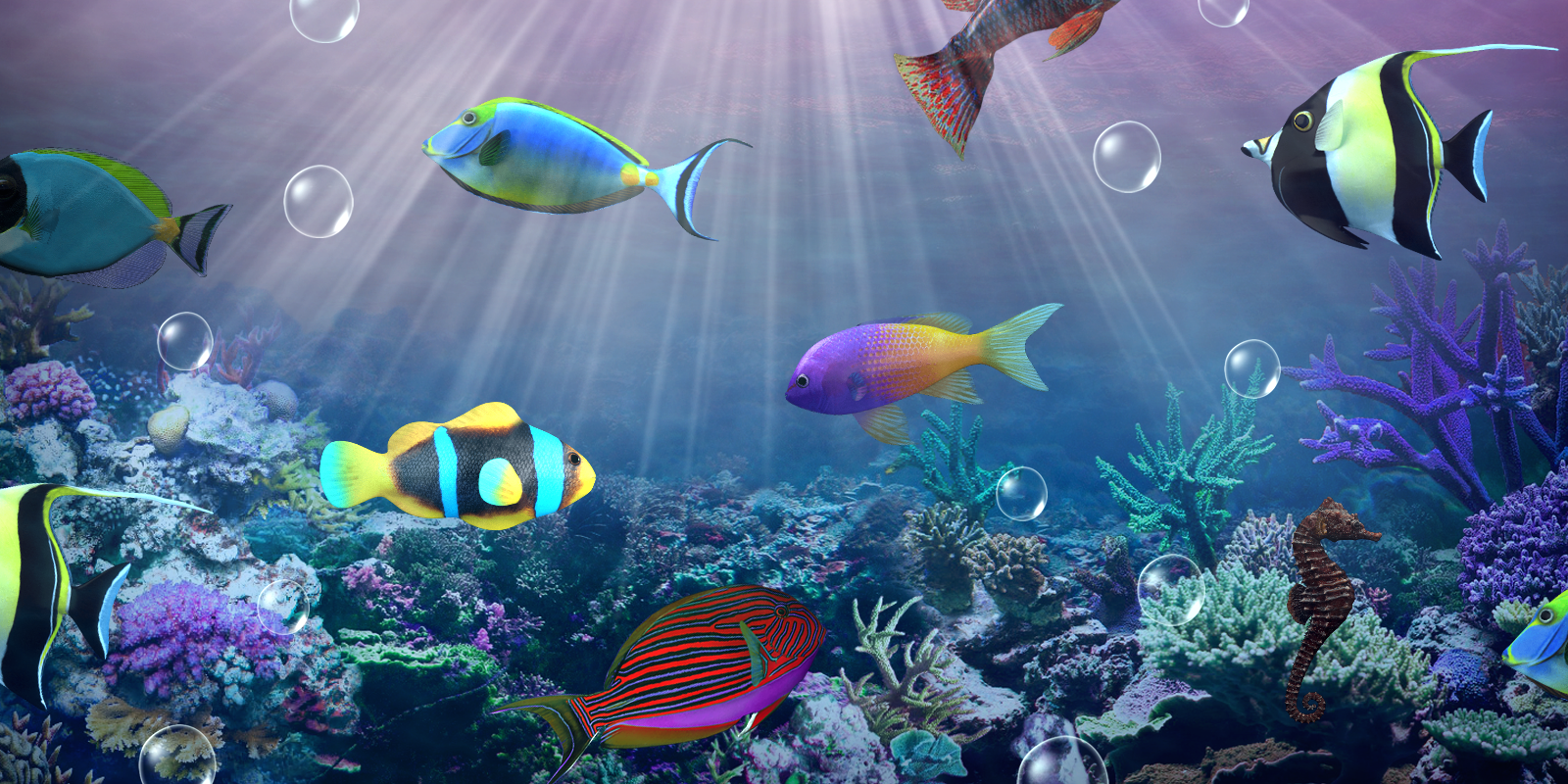 Fish aquarium live wallpaper - Aquarium Live Wallpaper Screenshot