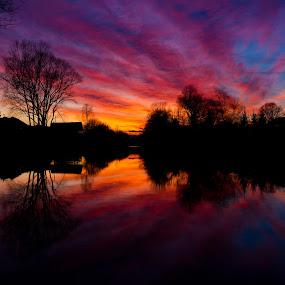 Sunset by Adrijan Pregelj - Landscapes Sunsets & Sunrises ( water, orange, sky, blue, sunset, trees, river )