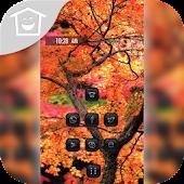 Beautiful maple theme