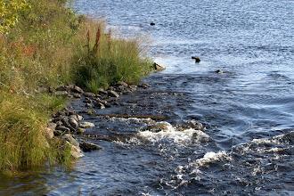 Photo: kirkas vesi huuhteli rantoja