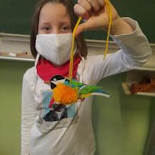2021-02 ŠD - Ptačí týden ve školní družině