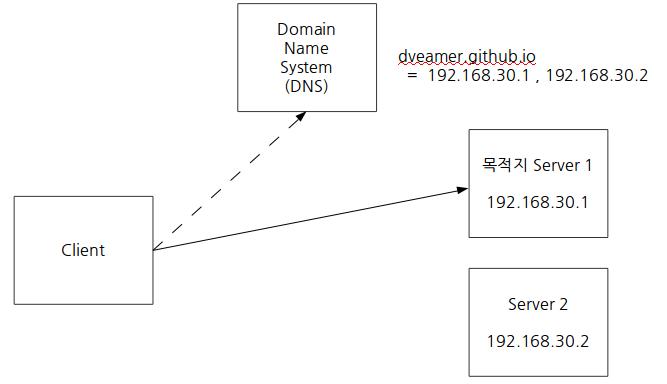 DNS질의