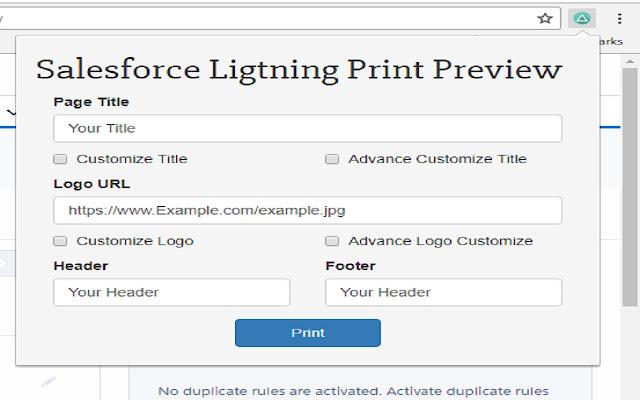 Salesforce Lightning Print Preview