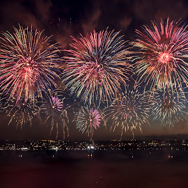 Australia Day by Clarissa Human - Abstract Fire & Fireworks ( firework, celebration, entertainment, fireworks, colours )
