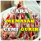 Cara Memasak Cumi Gurih Download on Windows