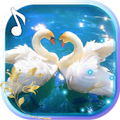 Swans Nobles LWP Android APK Download Free By Live Wallpaper Exellent