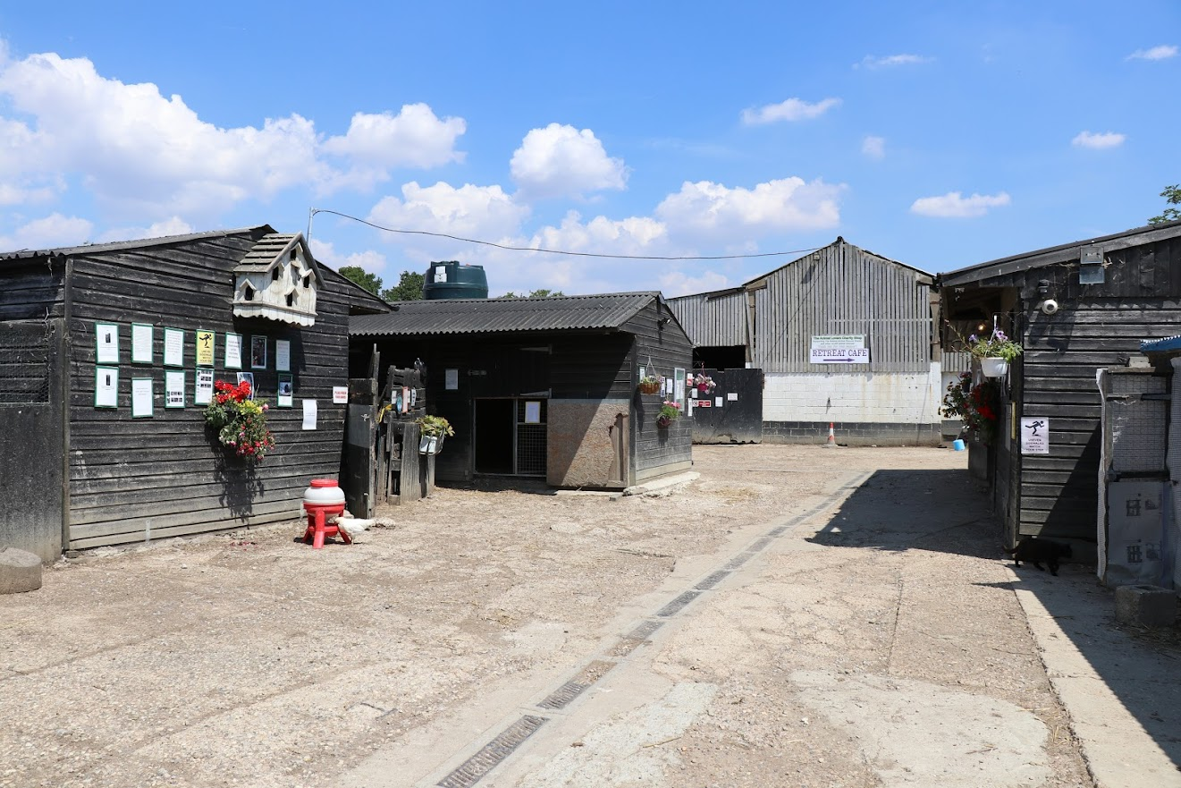 The Retreat Animal Rescue Centre and Cafe, Tenterden