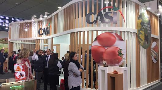 CASI fortalezará  su liderazgo en tomate en esta Fruit Logistica