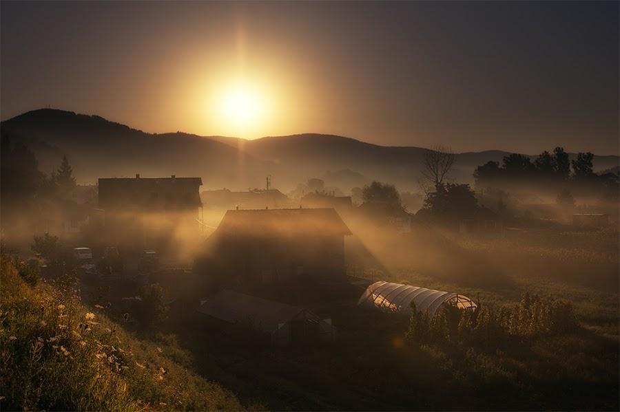 Silent Village by Bojan Dzodan - Landscapes Prairies, Meadows & Fields ( village, nature, fog, sunrise, light, sun )