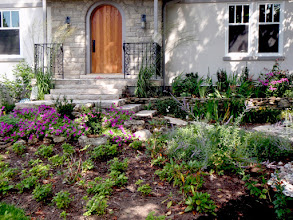 Photo: Plantings soften hardscapes.