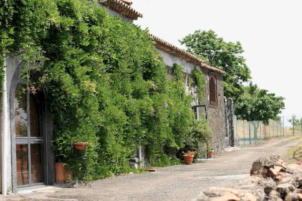 Agriturismo Oasi Dell'Etna