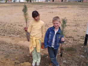 Photo: Plantación de árboles