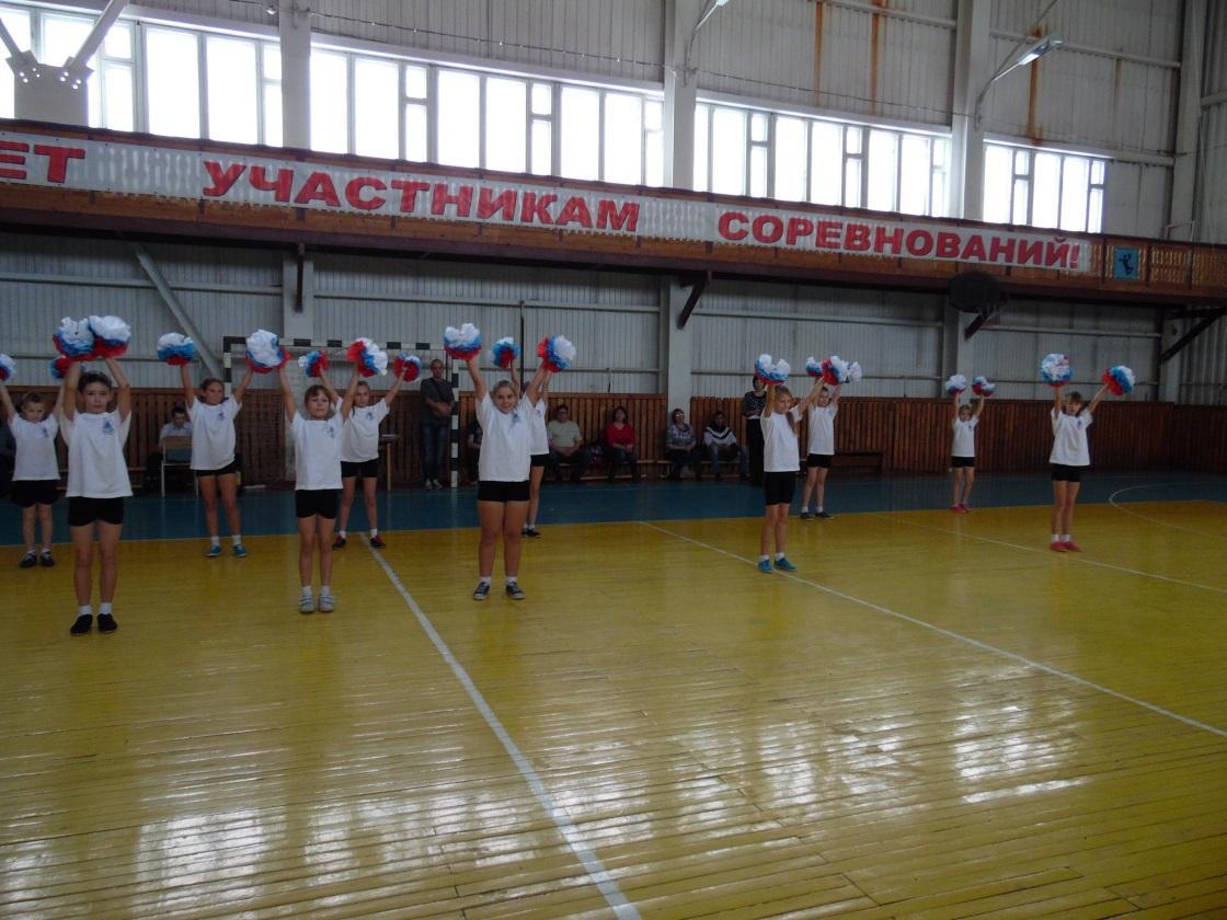 \\ТЕХНИК-ПК\local_trash\школьные фотографии\15-16\октябрь\зональные соревнования баскетбол\отчет о проведении\SAM_6246.JPG
