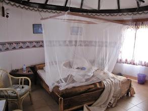 Photo: Mosquito netting