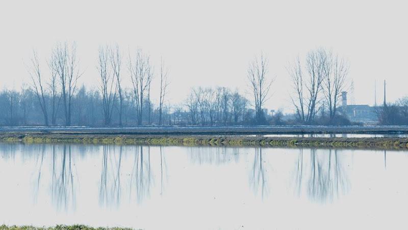 Specchio Naturale di Andrea15