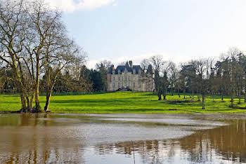 Château 25 pièces 900 m2