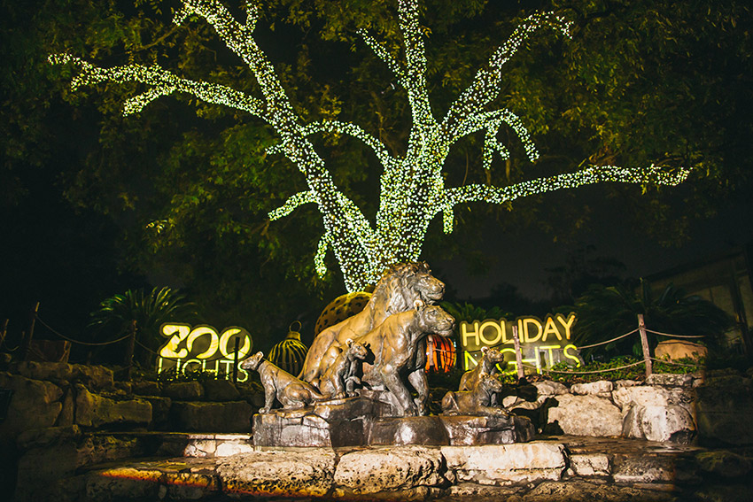 Top 10 Holiday Events in San Antonio   Christmas Events in ...
