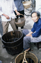 Photo: 11102 鎮江/自由市場/タウナギ