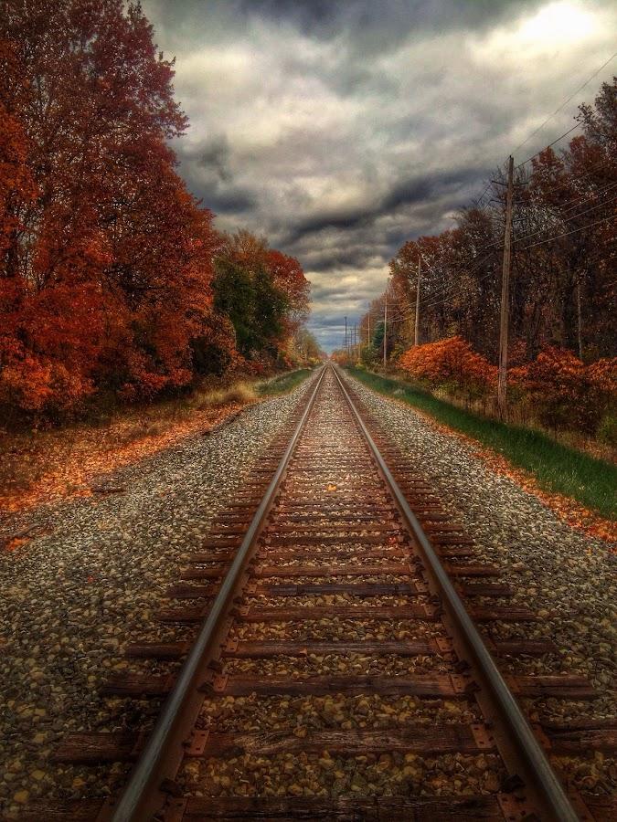 by Jeffrey Goodman - Travel Locations Railway