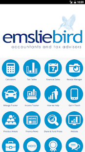 Emsliebird Accountants- screenshot thumbnail