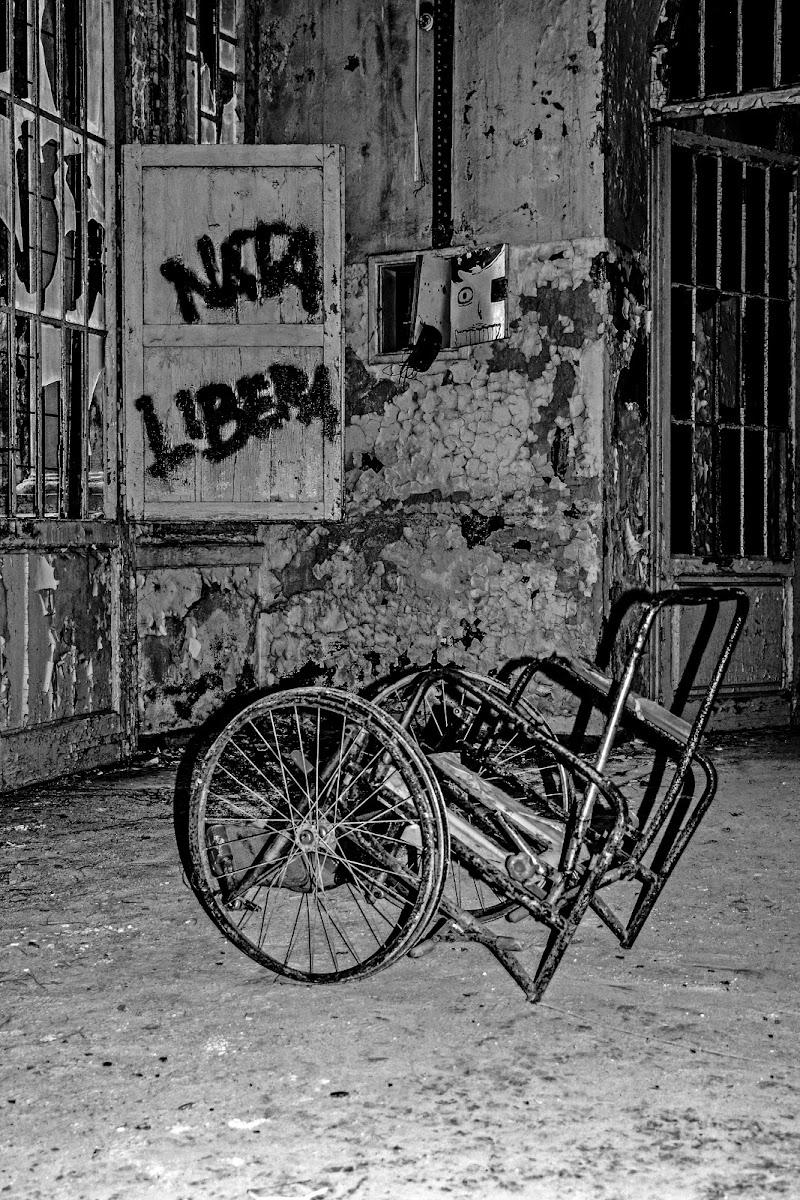 Conosco una sola libertà, e questa è la libertà della mia mente. (Anonimo). di Maria Luisa