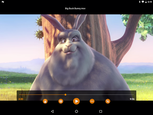 VLC screenshot 16