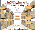 SAP EWMS Online Training