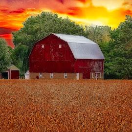 Farm Scene by Bill Diller - Digital Art Things ( wheat field, michigan, sunset, farm field, farm, red barn, trees, farm scene )