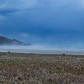 Stand storm by Jason Murray - Landscapes Weather ( salt lake, mountains, storm, salt, island, clouds, utah, sand, mountain, field, grass, beach, lake, landscape )