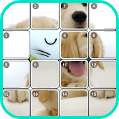 Puppies Mania Puzzle Games