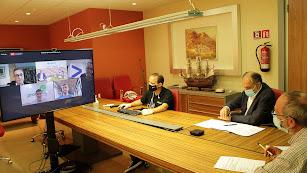 Ante las cámaras de los ordenadores los cuatro ponentes expusieron las líneas para aspirar al liderazgo.