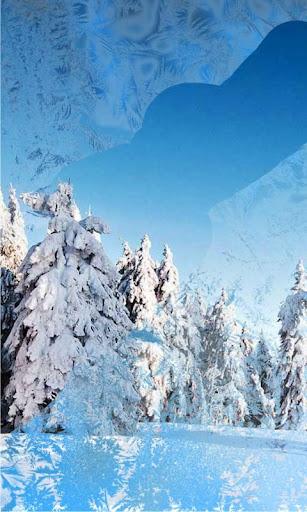 Snow Winter Nature LWP