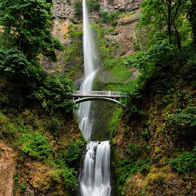 Multnomah Falls by Jim O'Neill - Landscapes Waterscapes ( oregon, waterfalls, portland, multnomah falls, i-84, columbia river gorge )
