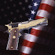 Virtual Pistol Colt Firearms (game)