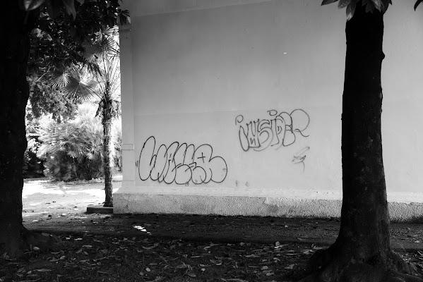 Bianco sporco di Roberto58