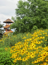 Photo: Yellow black-eyed Susans overlooking the tower at Cox Arboretum in Dayton, Ohio.