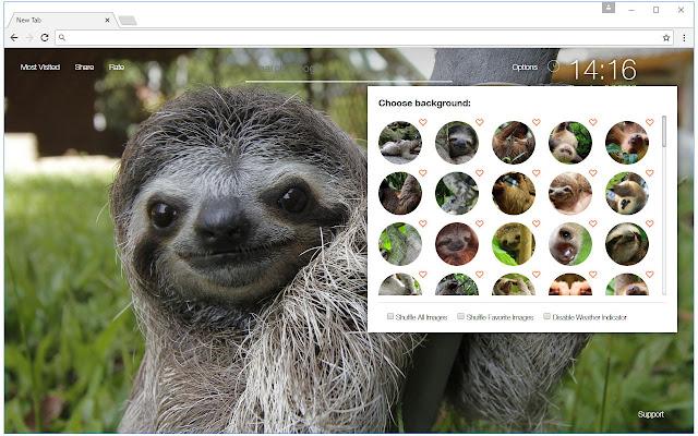 Sloth Wallpaper HD New Tab Sloths Themes