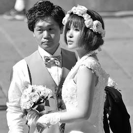 by Donna Van Horn - Wedding Bride & Groom (  )