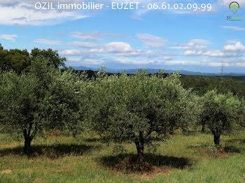 terrain à Euzet (30)