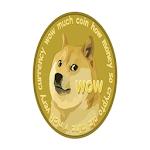 Doge Cash Icon