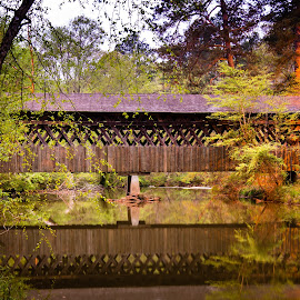 Pooles Mill by James Woodward - Buildings & Architecture Bridges & Suspended Structures ( country, georgia, reflection, covered bridge, river )