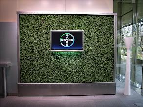 Photo: Grüne Wand4      Gerhardt Braun Concept    art aqua Cologne